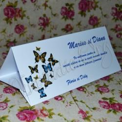 Plic de bani elegant cu Fluturi colorati