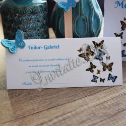 Plic de bani cu fluturi colorati 3d